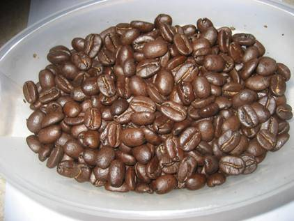 Coffee oil test just roasted small[220].jpg